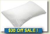 Sarah Peyton Memory Foam Pillow